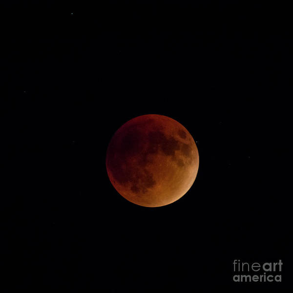 Photograph - Lunar Eclipse by Spencer Baugh