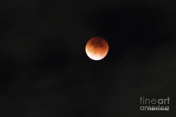 Wall Art - Photograph - Lunar Eclipse Supermoon Bloodmoon I September 27th 2015 by Verana Stark