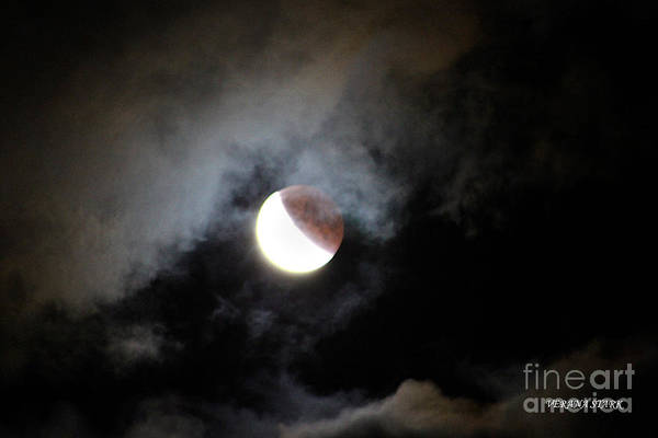 Wall Art - Photograph - Lunar Eclipse Supermoon Bloodmoon Viii September 27th 2015 by Verana Stark