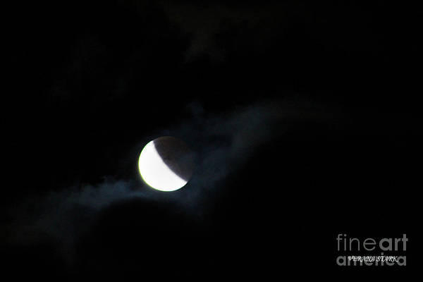 Wall Art - Photograph - Lunar Eclipse Supermoon Bloodmoon X September 27th 2015 by Verana Stark