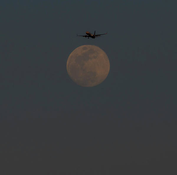 Photograph - Lunar Landing by Alex Lapidus