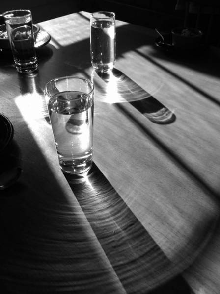 Photograph -  Light Lunch For Three by Polly Castor