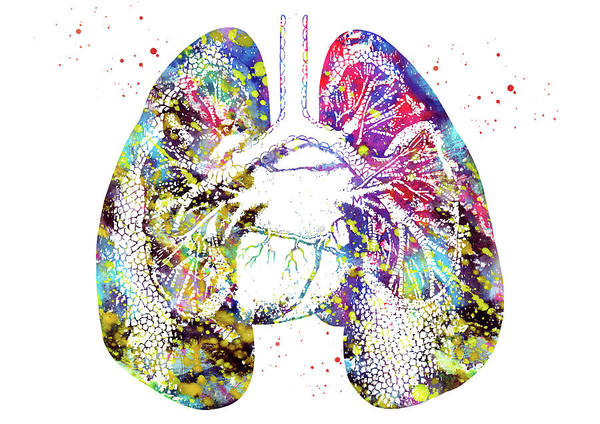 Lung Digital Art - Lungs And Heart 2 by Erzebet S