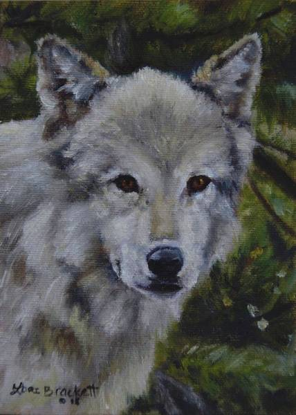 Painting - Lupine Gaze by Lori Brackett