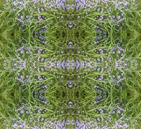 Photograph - Luscious Blue Flower Grass Mandala by Julia Woodman