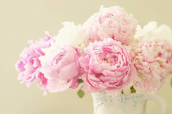 Peonies Photograph - Lush by Amy Tyler