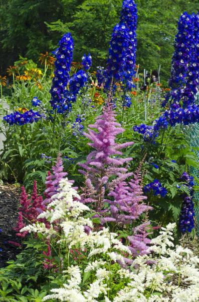 Photograph - Lush Flower Garden by Lynn Hansen