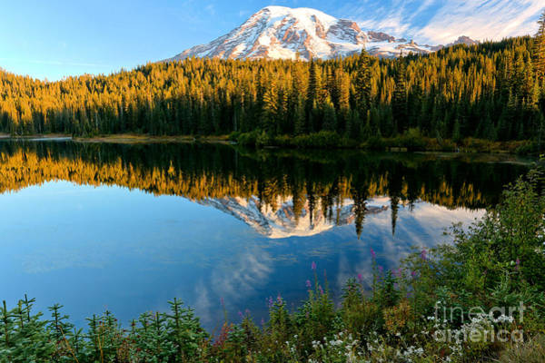 Photograph - Lush Rainier Frame by Adam Jewell