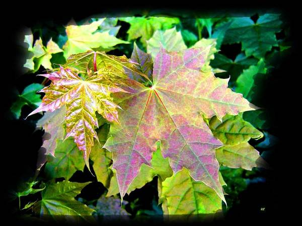 Border Mixed Media - Lush Spring Foliage by Will Borden