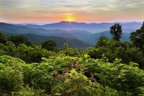 Photograph - Lush Sunset In June by Deborah Scannell