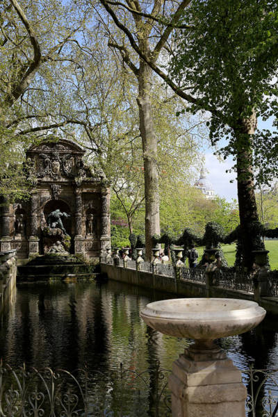 Photograph - Luxembourg Gardens 9 by Andrew Fare