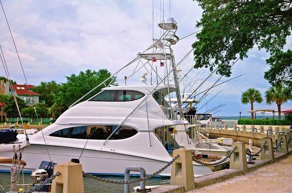Photograph - Luxury Fishing by Susan Leggett