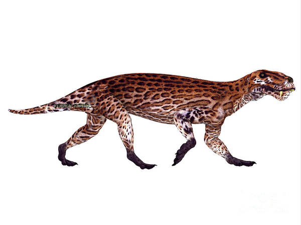 Primeval Painting - Lycaenops Permian Dinosaur by Corey Ford