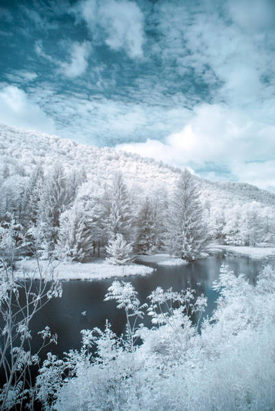 Photograph - Lyman Run State Park 0376ir by Guy Whiteley