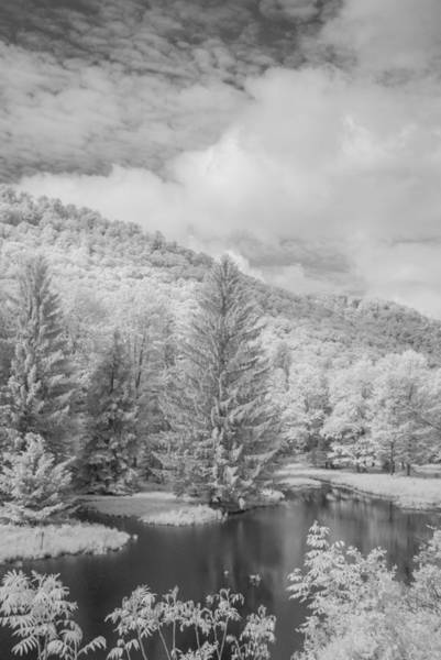 Photograph - Lyman Run State Park 0377 by Guy Whiteley