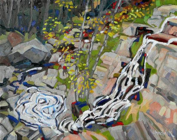 Birder Painting - Lyn Hairpin by Phil Chadwick
