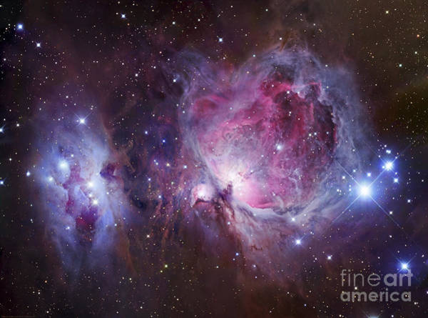 Photograph - M42, The Orion Nebula Top, And Ngc by Robert Gendler