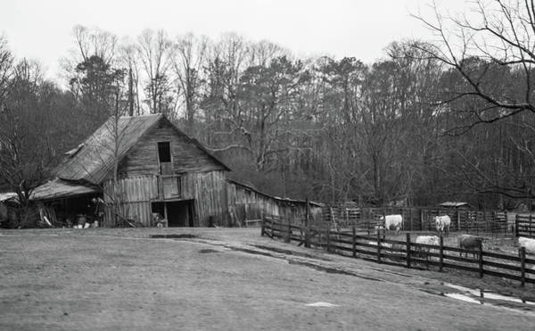 Sentimentality Photograph - Ma And Pa Kettles Farm by Douglas Barnett