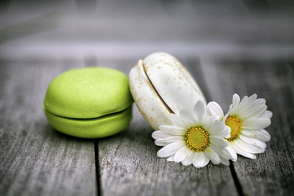 Wall Art - Photograph - Macarons by Nailia Schwarz