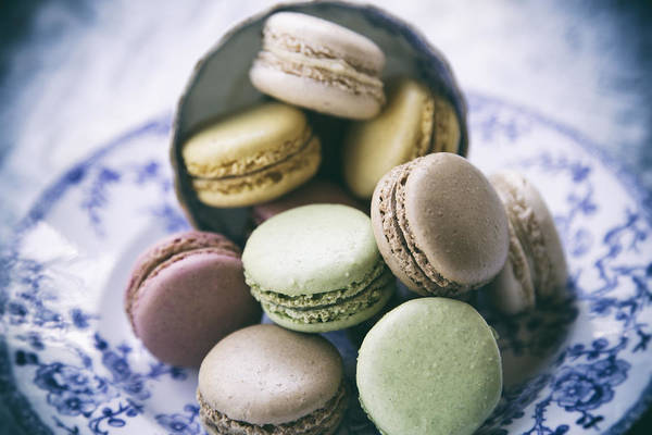 Wall Art - Photograph - Macarons On A Vintage Plate by Georgia Fowler