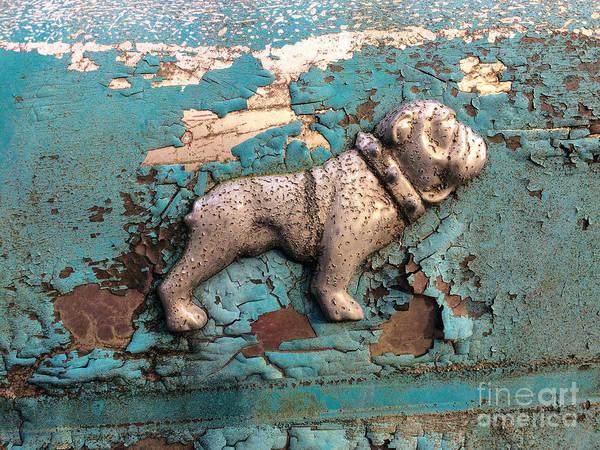 Photograph - Mack Bulldog II by Terry Rowe