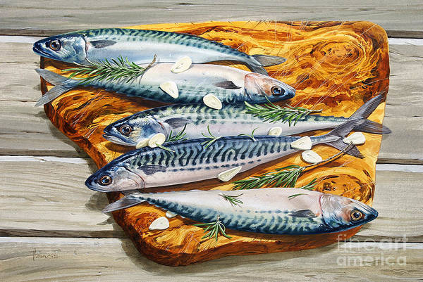 Wall Art - Painting - Mackerel On Board by MGL Meiklejohn Graphics Licensing