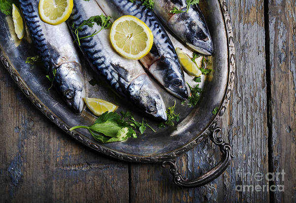 Wall Art - Photograph - Mackerels On Silver Plate by Jelena Jovanovic