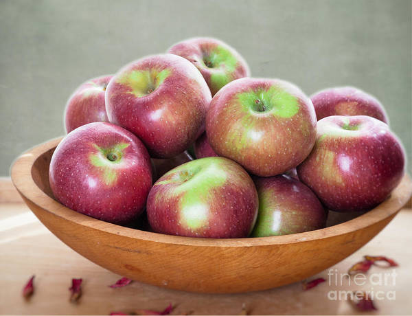 Photograph - Macoun Apples by Ann Jacobson