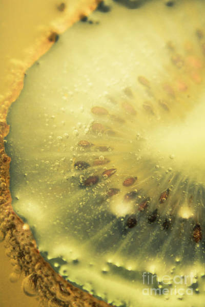 Bubble Up Photograph - Macro Shot Of Submerged Kiwi Fruit by Jorgo Photography - Wall Art Gallery