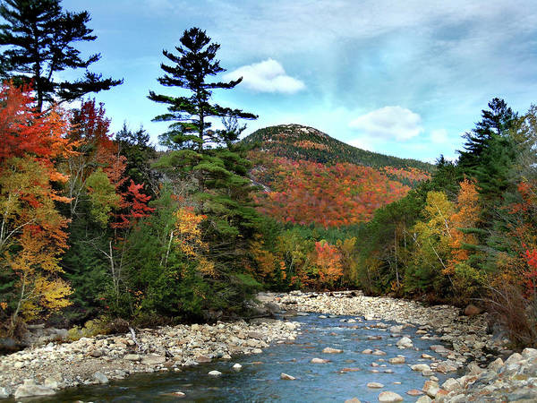 Photograph - Mad River By Welch And Dickey  by Nancy Griswold