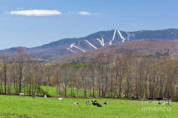 Waitsfield Photograph - Mad River Valley April by Alan L Graham