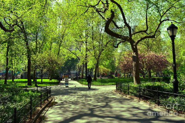 Photograph - Madison Square Park by Christopher Shellhammer
