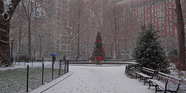 Photograph - Madison Square Park In The Snow At Christmas by Chris Lord