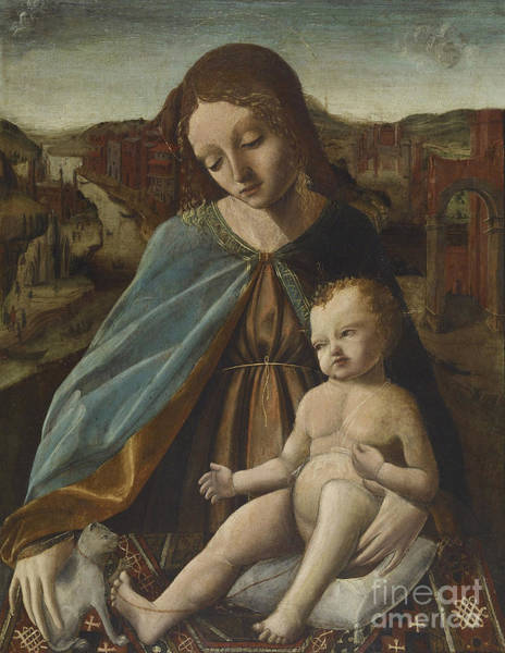 Wall Art - Painting - Madonna And Child With Cat by Master of the Pala Sforzesca