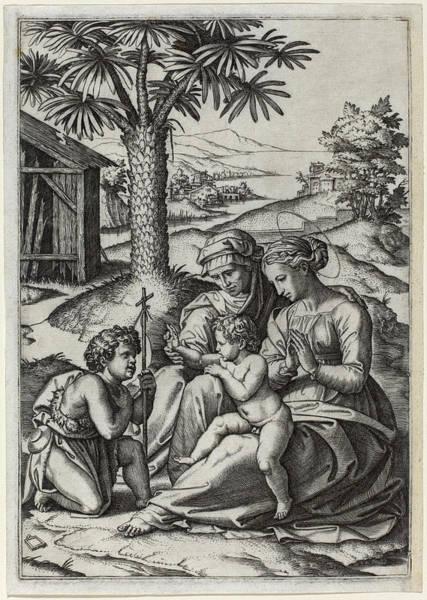 Drawing - Madonna Under A Palm Tree by Marcantonio Raimondi