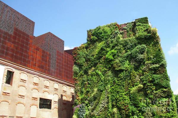 Caixa Forum Wall Art - Photograph - Madrid 50 by Randall Weidner