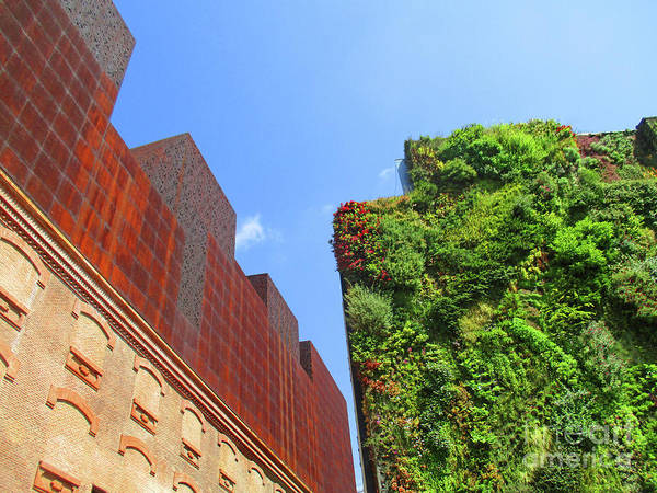 Caixa Forum Wall Art - Photograph - Madrid 52 by Randall Weidner