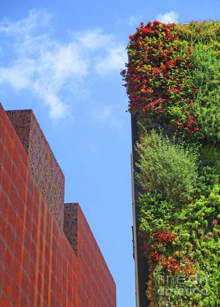 Caixa Forum Wall Art - Photograph - Madrid 54 by Randall Weidner