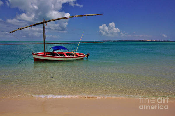 Photograph - Magaruque Sailing Boat by Jeremy Hayden