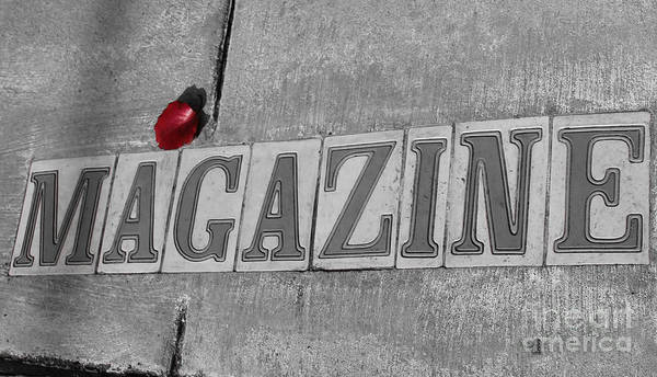 Photograph - Magazine St. Sign by Julia Rigler
