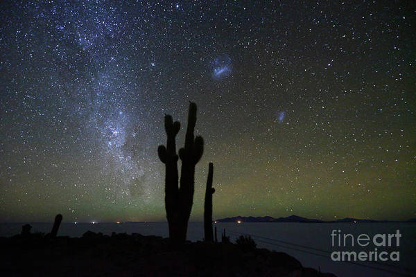 Photograph - Magellanic Clouds Milky Way And Cactus Silhouette Incahuasi Island Bolivia by James Brunker