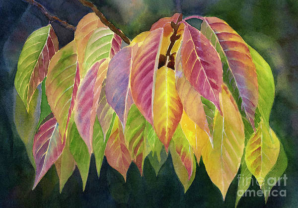 Wall Art - Painting - Magenta And Green Autumn Leaves by Sharon Freeman