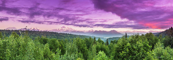 Photograph - Magenta Morn by Ed Boudreau