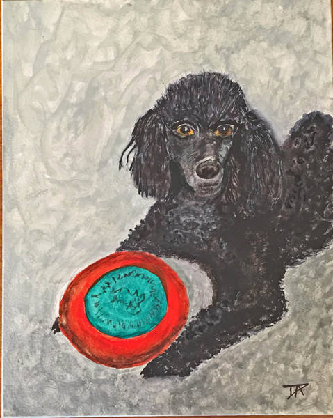 Painting - Maggie And Her Frisbee by Donald Paczynski