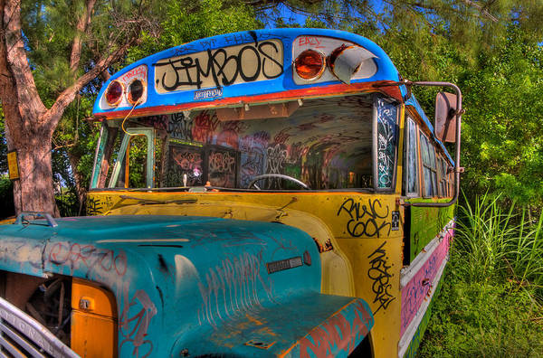 Wall Art - Photograph - Magic Bus by William Wetmore