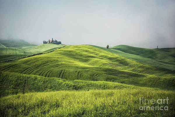 Wall Art - Photograph - Magic Fields by Evelina Kremsdorf
