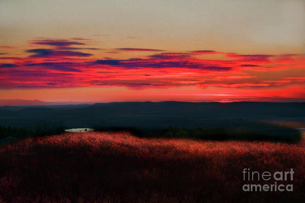 Photograph - Magic Hour At Dolly Sods On Canyon Rim Trail by Dan Friend