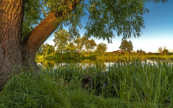 Photograph - Magic Lake Shore by