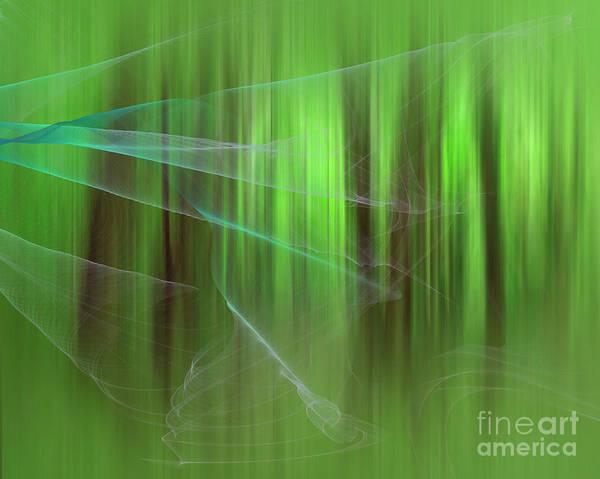 Digital Art - Magical Forest by Edmund Nagele