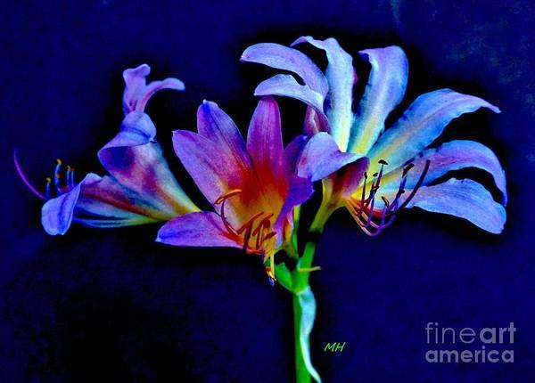 Wall Art - Photograph - Magical Lilies by Marsha Heiken